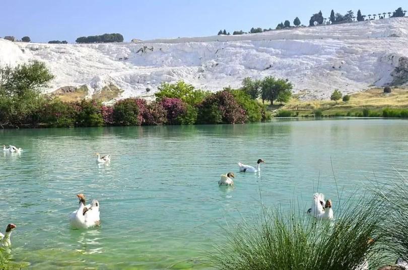 Ephesus Tour, Pamukkale Tour, Turkey Tours, Turkey Tours Packages (18)