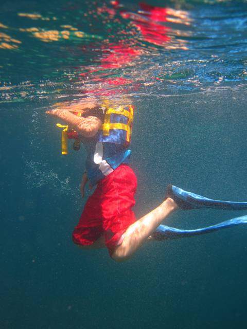 Snorkeling trips for any age Loreto BCS