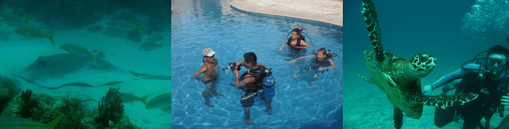 PADI dive course-divemaster