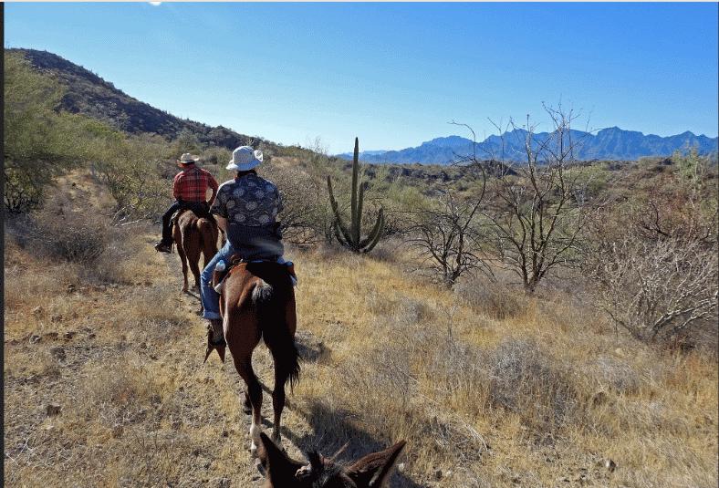 Mountain Horseback Rides Loreto Baja California Sur