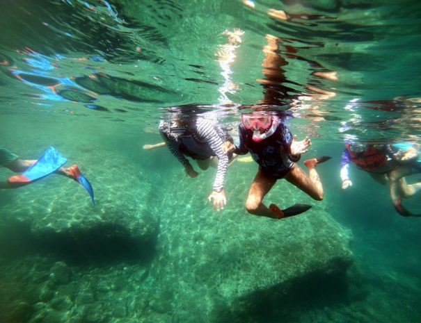 snorkeling Danzante