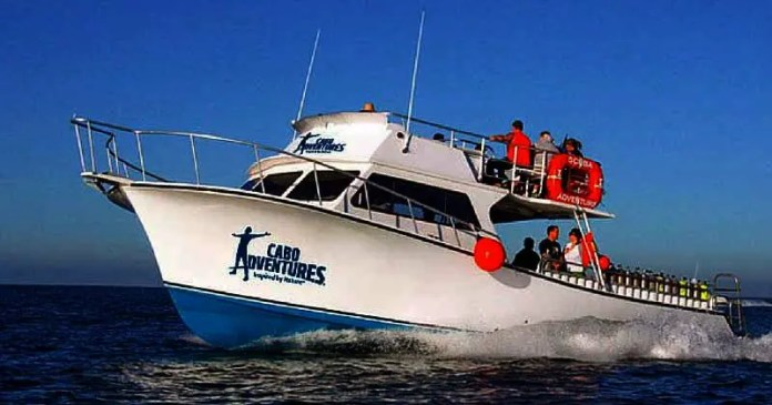 Buceo en Cabo San Lucas para Principiante / Tours Los Cabos