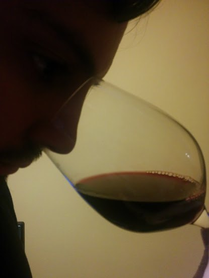 guia catas de vino