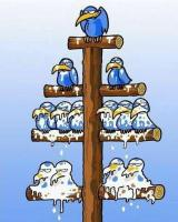 Systeme pyramidale Système de Ponzi