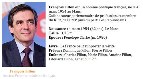 Le statut VDI - François Fillon