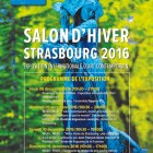 salon-hiver-art-contemporain-2016