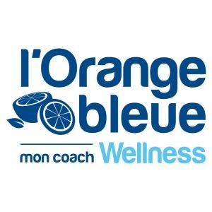 """Résultat de recherche d'images pour """"l'orange bleue santé"""""""