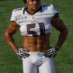 Brendon Ayanbadejo: Only 3% Of NFL Is Gay