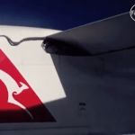 Qantas-Riding Python Retroactively Becomes Star Of 2006 Movie: VIDEO