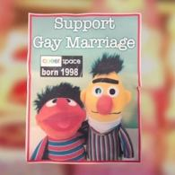 Bakery Refuses Order For 'Bert and Ernie' Cake Supporting Gay Marriage: VIDEO