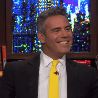 Gay Iconography: Andy Cohen's TV Legacy