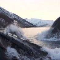 Norwegian Whale Watchers Get the Surprise of Their Lives When Pod of Humpbacks Surface Near Boat: VIDEO