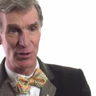 The Evolution Of Dogs, With Bill Nye: VIDEO