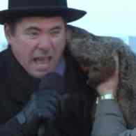 Jimmy The Groundhog Doesn't See His Shadow But Has a Taste For Blood: VIDEO