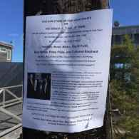 Signs Posted in Fire Island Pines Urge Boycott of Businesses Owned by Cruz-Supporting Gay Hotelier