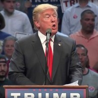 Donald Trump 7-11