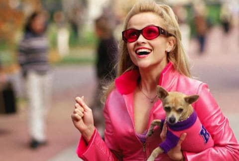 Streaming movies this month include Legally Blonde