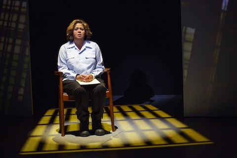 "Anna Deavere Smith in ""Notes from the Field"""