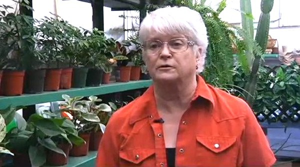 Christian Florist Wins at Supreme Court in Gay Wedding Case