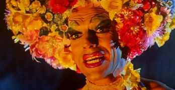 'Priscilla, Queen of the Desert' and more streaming this month