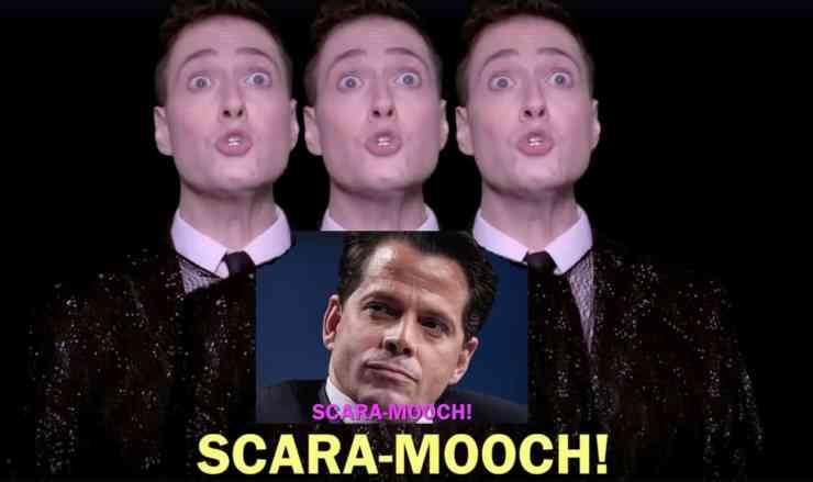 Randy Rainbow Scaramucci