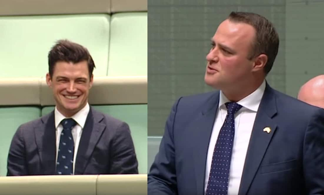 Tim Wilson parliament gay marriage proposal