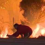 California Wildfire Hero Risks Life to Save Rabbit, Goes Viral: Watch