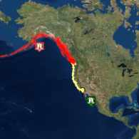 Tsunami Warning Issued After 7.9 Earthquake Off Alaska; U.S. West Coast on Alert