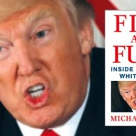 Wikileaks Posts Full Michael Wolff 'Fire and Fury' Book Online