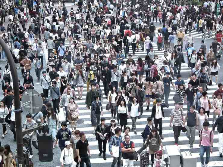 Best things to do in Tokyo Shibuya crossing
