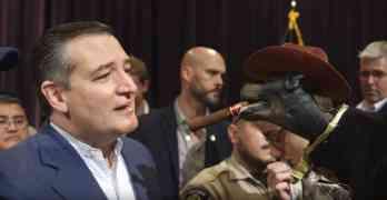 Ted Cruz Triumph Insult Comic dog