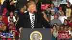 trump momentum
