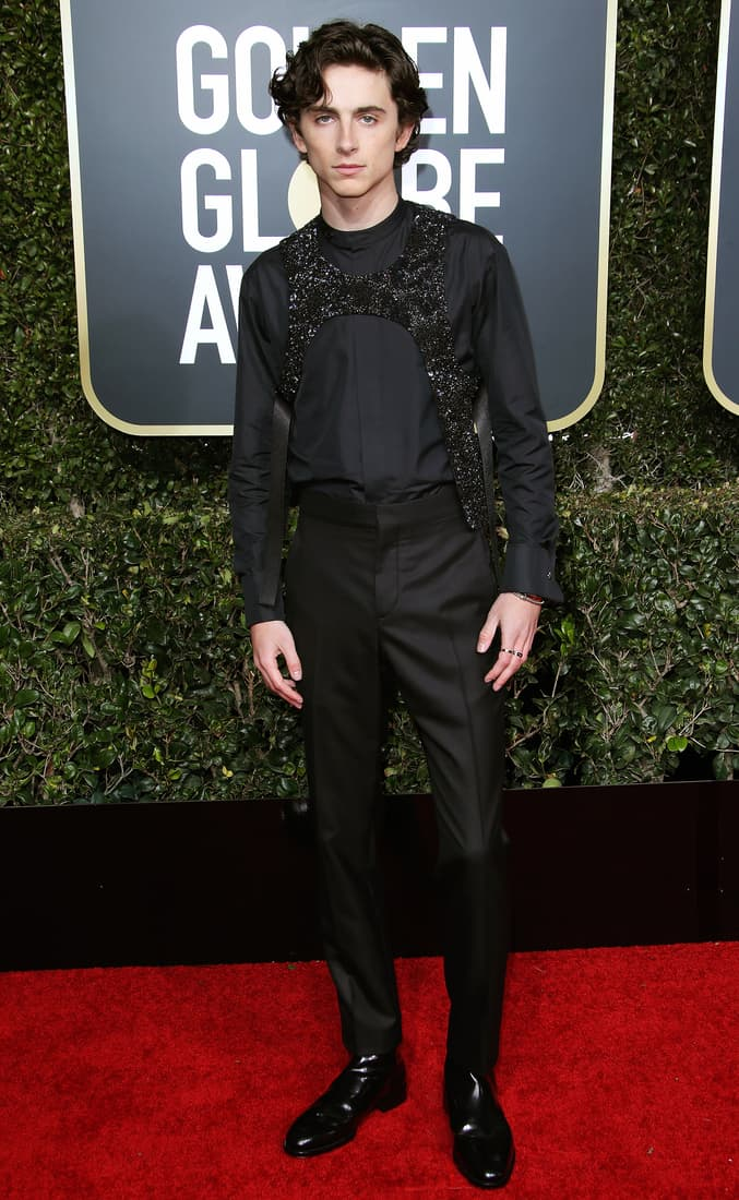 Timothée Chalamet in a funky bejeweled Louis Vuitton harnesses