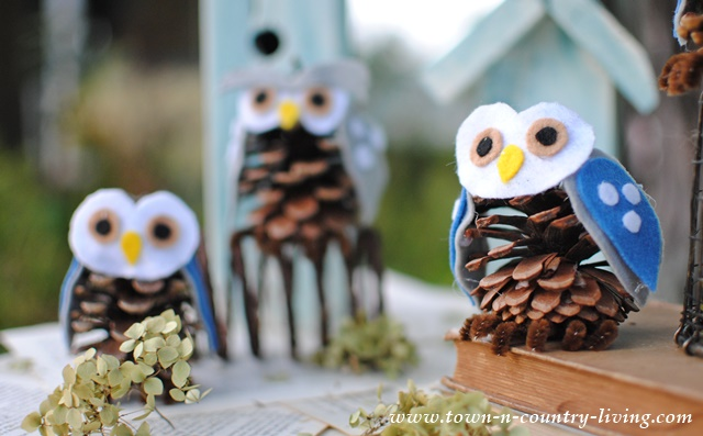 Pine Cone Owls  Town  Country Living