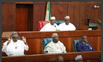 Photo of the Year: Buhari's 4+4