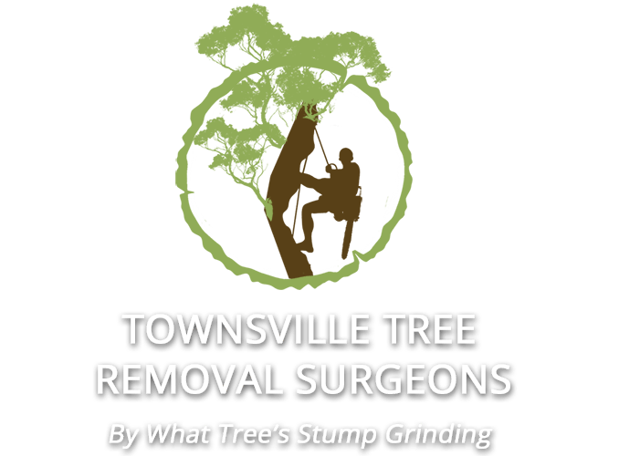 Townsville Tree Removal Surgeons logo