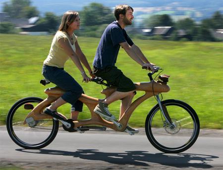 Unique Wooden Bicycle 2