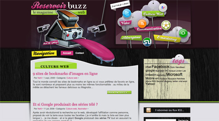 Beautiful WordPress Blog Designs WwW.Clickherecoolstuff.blogspot.com01