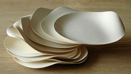 Wasara Paper Dishes