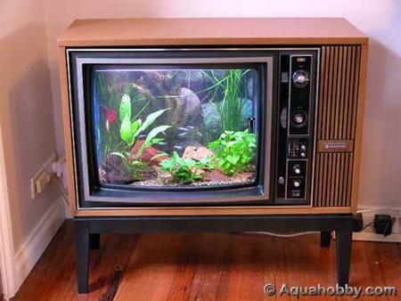 Old TV Aquarium