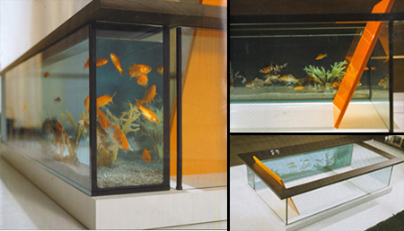 Bathtub Aquarium