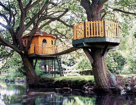 Beautiful Amazon Tree Houses 3