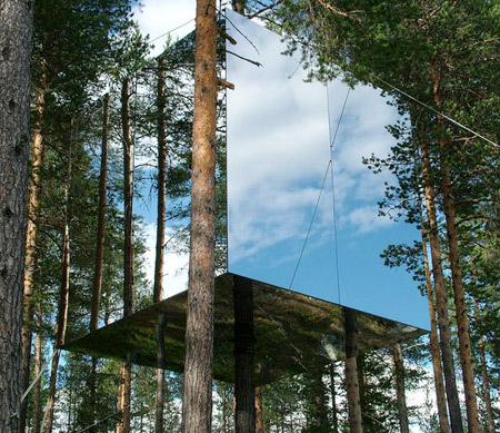 Mirrored Treehouse