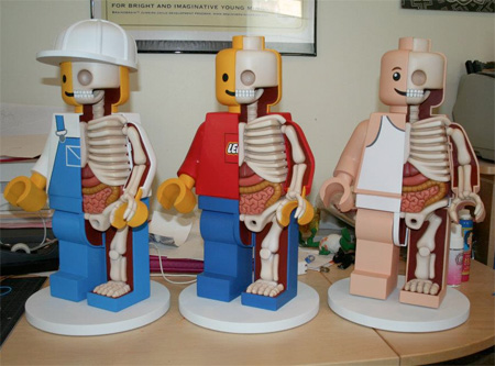 Anatomy of LEGO