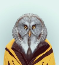 Animals in Human Clothing
