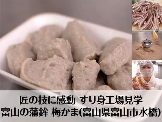 梅かま すり身・かまぼこ工場見学 富山の蒲鉾
