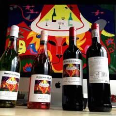 Boschendall Wines - Big Five - Toyism Art Movement