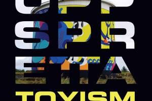 Books - Uppspretta Book - Toyism