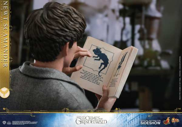 fantastic-beasts-the-crimes-of-grindwald-newt-scamander-sixth-scale-figure-hot-toys-904194-16