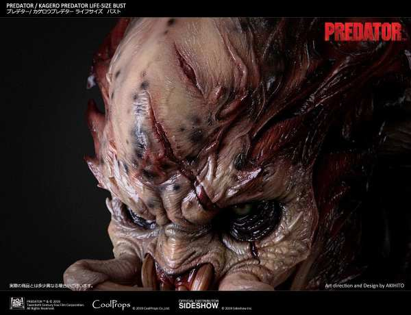 kagero-predator-life-size-bust-coolprops-904233-40